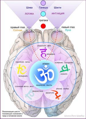 цели раджа-йоги